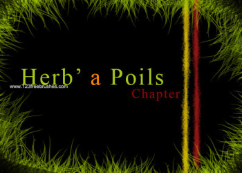 Herbe a Poils – Make Grass and Hair