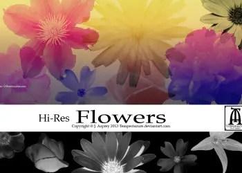 Flower Design Brushes For Photoshop Cs5