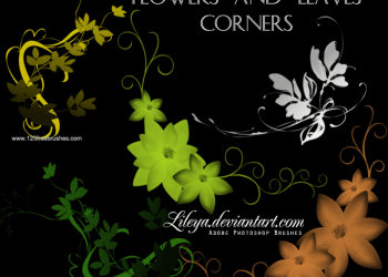 Flowers and Leaves Corners