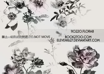 Flowers Brushes Photoshop Free Download