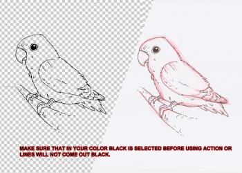 Floating Lineart Red Sketch Photoshop Action