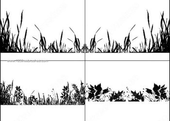 Grass Meadow Photoshop Free Brushes