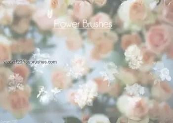 Flower Brushes Cs6