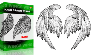 Hand Drawn Wings Set.1 | Vol : 1