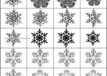 Free Snowflakes Photoshop Brushes