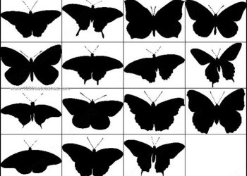 Free Butterfly Silhouettes Brushes Photoshop