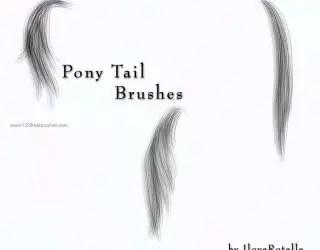 Pony Tail