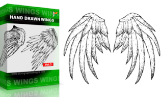 Hand Drawn Wings Set.1 | Vol : 3