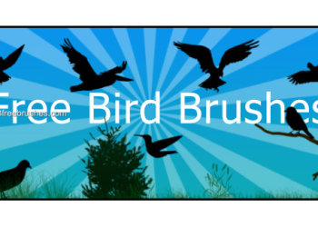 Free Bird Photoshop Brushes