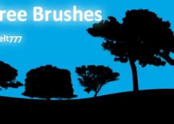 Hi-Res Tree Silhouettes