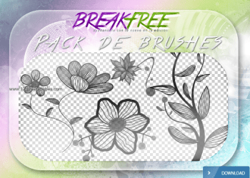 Photoshop Cs4 Brushes