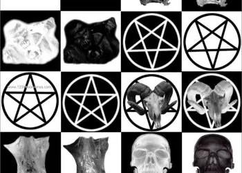 Crossbones – Human and Animal Skulls