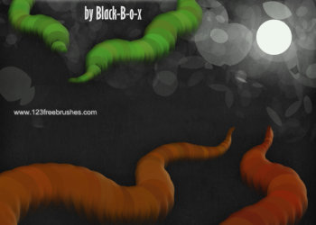 Worm And Bokeh