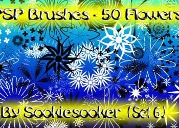 Flower Brushes On Photoshop