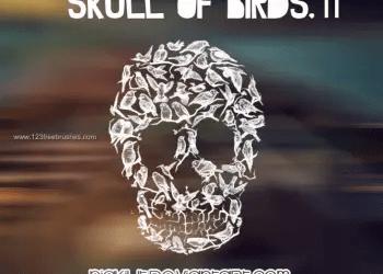 Skull Made of Birds