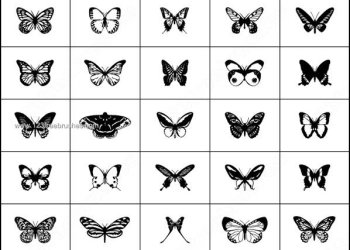 Free Butterfly Brushes for Photoshop 7