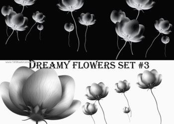 Dreamy Flowers