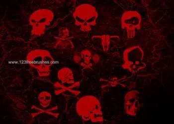 Skull – Crossbones