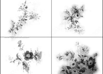 Flower Brushes for Photoshop Free