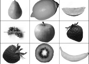 Fruits Apple – Banana – Grapes Brushes for Photoshop CS