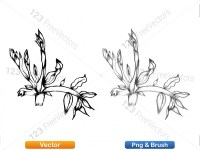 5002008-sketchy-plants-vector-and-photoshop-brush-pack-01_p008