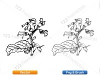 5002009-sketchy-plants-vector-and-photoshop-brush-pack-02_p011