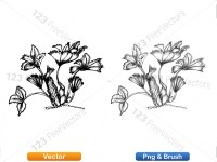 5002010-sketchy-plants-vector-and-photoshop-brush-pack-03_p003