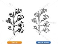5002010-sketchy-plants-vector-and-photoshop-brush-pack-03_p010