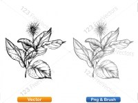 5002011-sketchy-plants-vector-and-photoshop-brush-pack-04_p003
