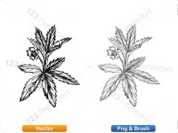 5002012-sketchy-plants-vector-and-photoshop-brush-pack-05_p002