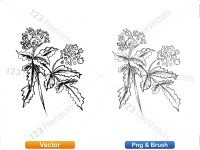 5002012-sketchy-plants-vector-and-photoshop-brush-pack-05_p006