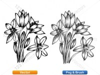 5003048-hand-drawn-sketch-flowers-vector-and-photoshop-brush-pack-01_p003