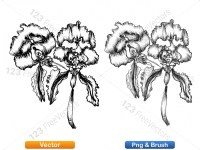 5003048-hand-drawn-sketch-flowers-vector-and-photoshop-brush-pack-01_p006