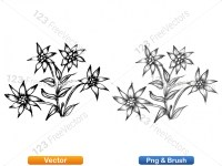 5003049-hand-drawn-sketch-flowers-vector-and-photoshop-brush-pack-02_p012