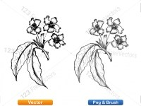 5003051-hand-drawn-sketch-flowers-vector-and-photoshop-brush-pack-04_p001