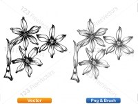 5003053-hand-drawn-sketch-flowers-vector-and-photoshop-brush-pack-06_p008