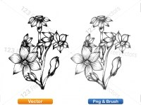 5003054-hand-drawn-sketch-flowers-vector-and-photoshop-brush-pack-07_p001
