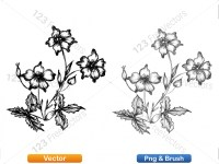 5003056-hand-drawn-sketch-flowers-vector-and-photoshop-brush-pack-09_p003