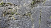 5051010-wet-stone-wall-textures-01_p004