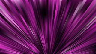 Abstract Purple and Black Radial Stripes Background Vector Illustration