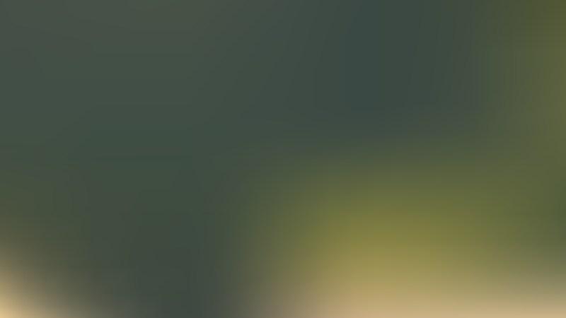 Dark Green PPT Background