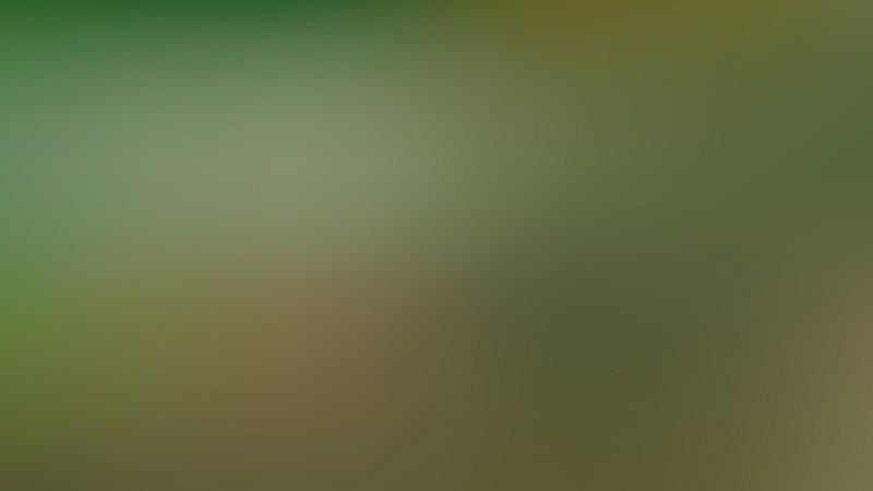 Dark Green Blur Background