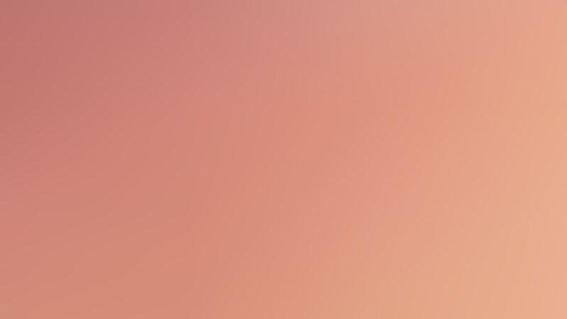 Light Color Presentation Background Vector