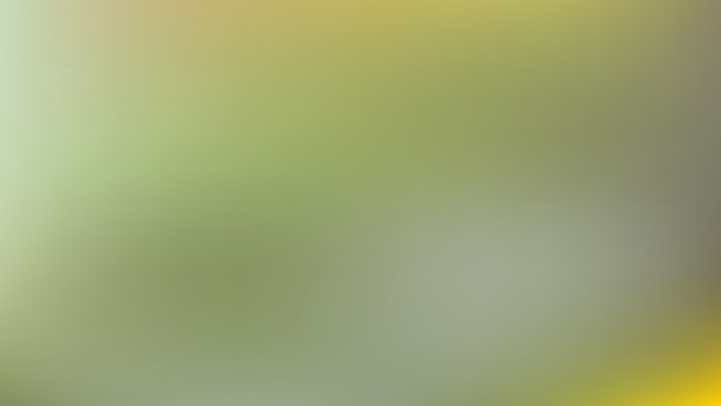 Light Green PowerPoint Slide Background