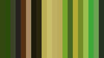 Green and Black Striped background
