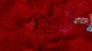Dark Red Wool Fabric Texture