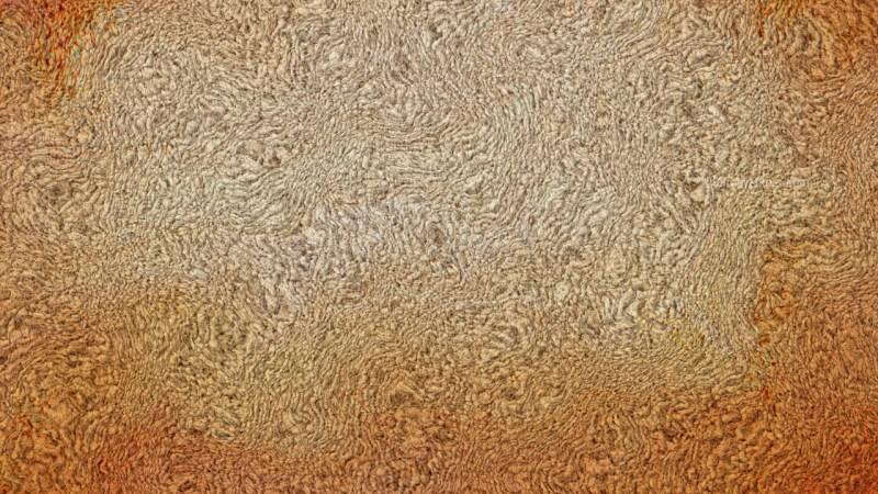 Orange Towel Texture
