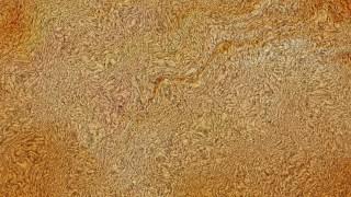 Orange Tweed Wool Background Texture