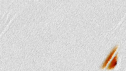 Plain White Leather Background Texture