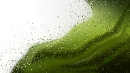Green and Black Water Drops Background Texture